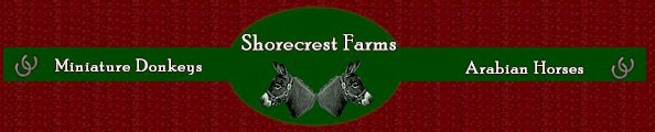Welcome to Shorecrest Farms!  ~ Logo designed by Julia Vaughn