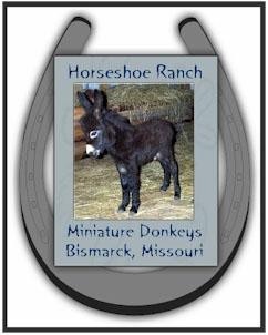 Shorecrest Farm's Miniature Donkey Farm's Favorite Links in Linden